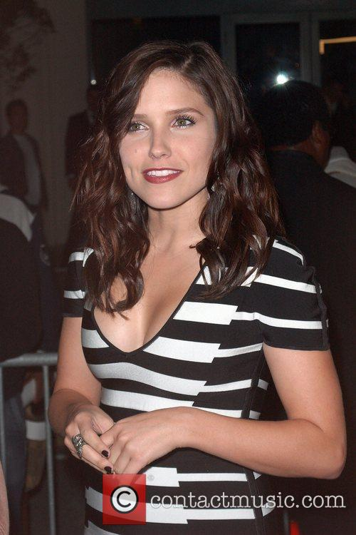 Actress Sophia Bush  attends 'The Art of...