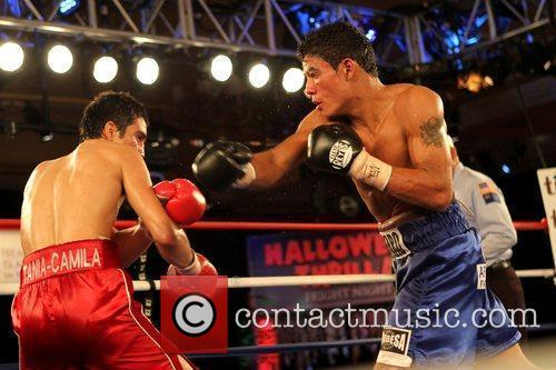 Fight during Halloween Thriller Fight Night held at...