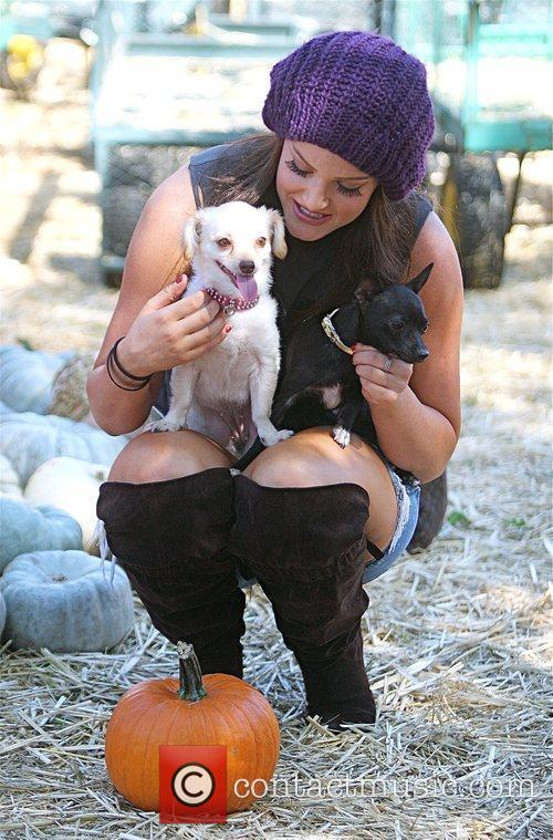 Lacey Schwimmer Visits Mr. Bones Pumpkin Patch In West Hollywood With Her Two Puppies 5