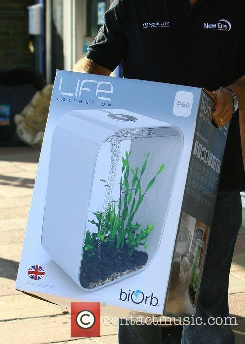 The Fish Tank  bought by Peter Andre...