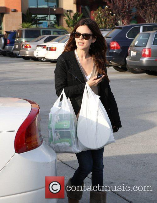 Rachel Bilson, a friend pick up miniature lights and other supplies at Michael's in Glendale 17
