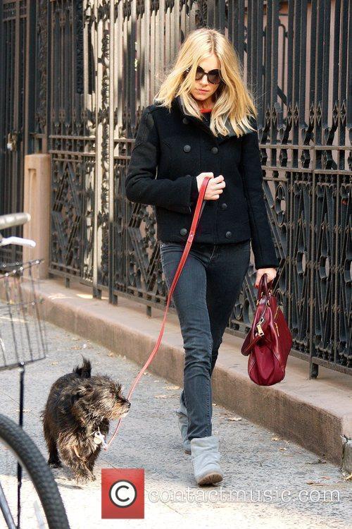 Sienna Miller bundles up to take her dog...