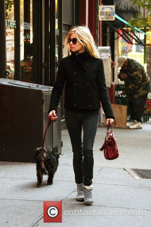Sienna Miller bundles up to take her dog...