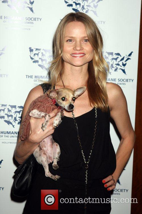 Lindsay Pulsipher  The HSUS Presents Rescue Paws...