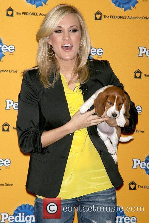 Attends the 6th Annual Pedigree Adoption Drive at...