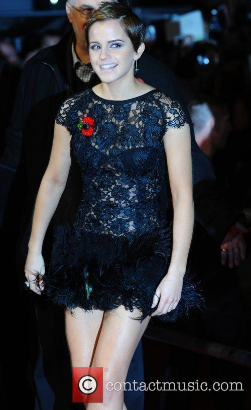 Emma Watson and Harry Potter 36