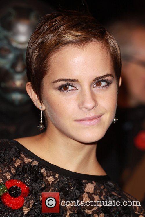 Emma Watson and Harry Potter 1