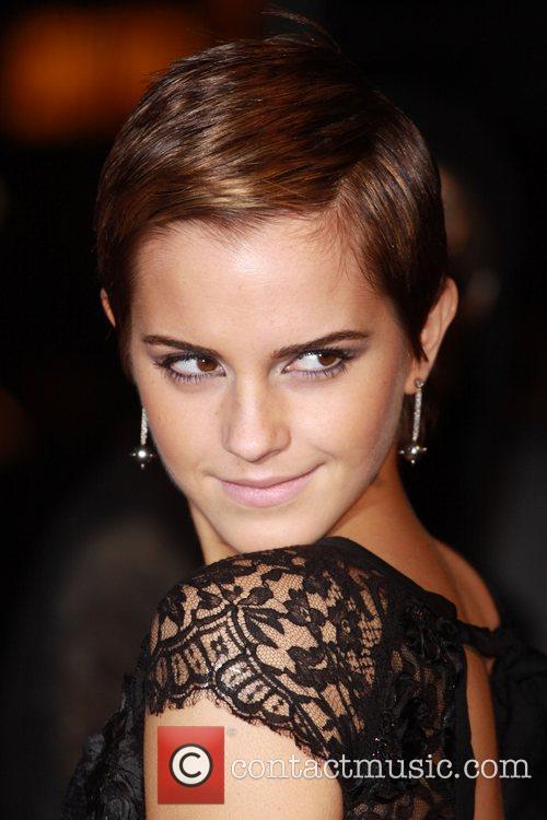 Emma Watson and Harry Potter 18