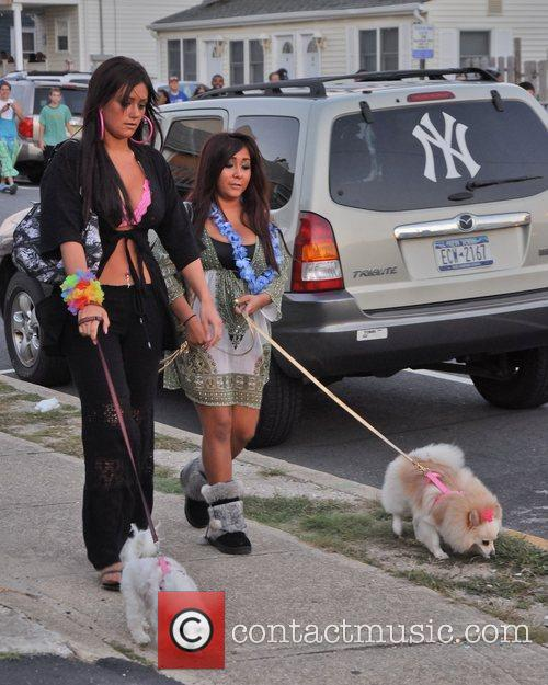 Take their dogs for an evening walk