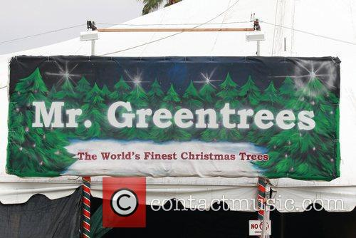 General View Of Mr. Greentrees Christmas Tree Outlet 1