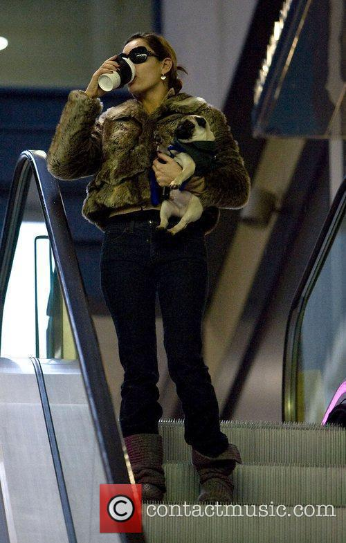 Kelly Brook carrying her dog while out and...