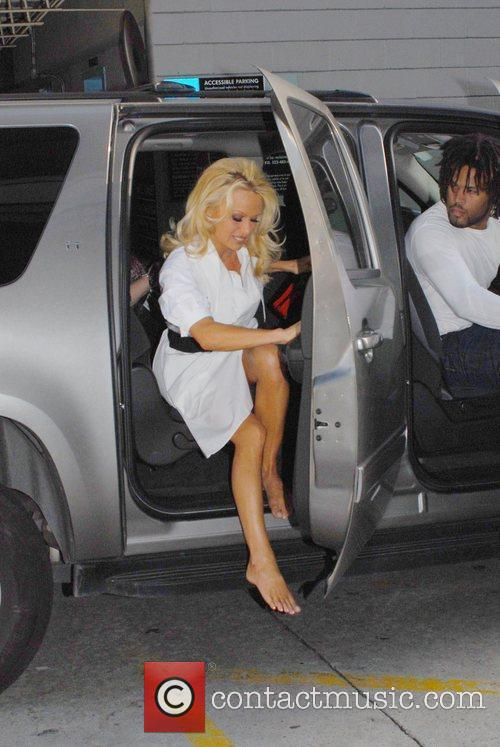 Pamela Anderson, Larry King and Cnn 4