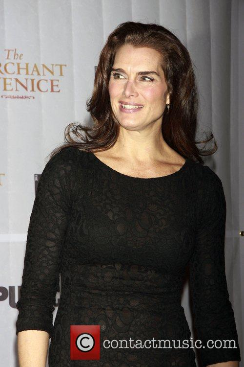 brooke shields 3085298