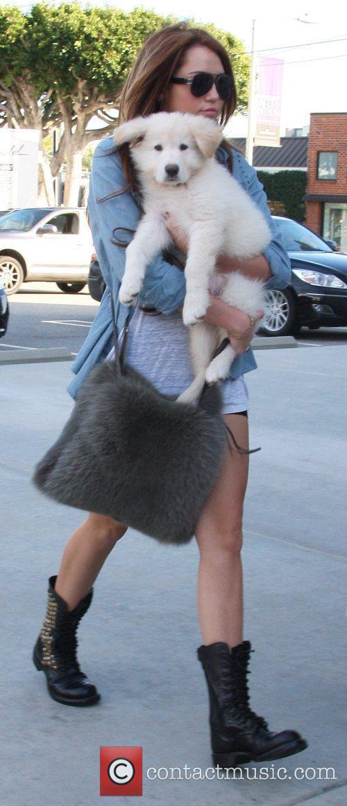 Miley Cyrus and her new puppy went to...