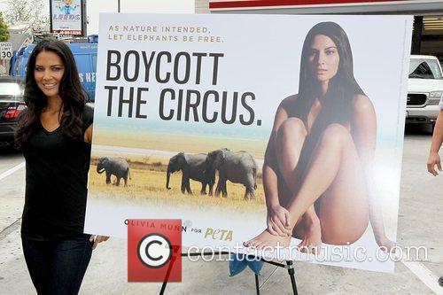 Olivia Munn showing off her new PETA billboard...