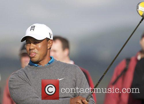Tiger Woods 8