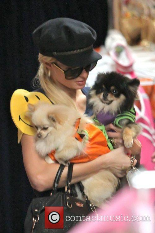 Paris Hilton shopping for Halloween costumes at Trashy...