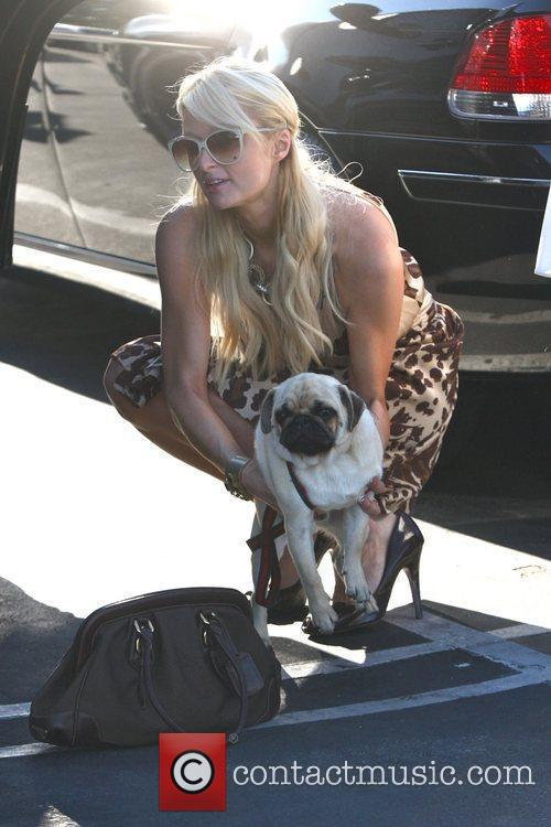 Departs Fred Segal with her pug dog