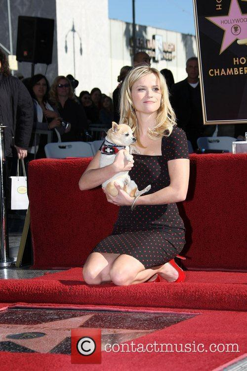 Reese Witherspoon and her co-star Chihuahua dog Bruiser...