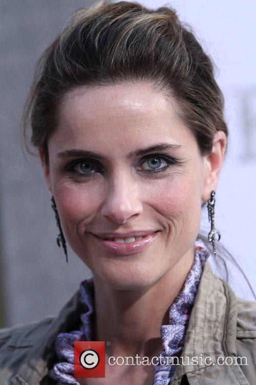 Amanda Peet and Sex And The City 5