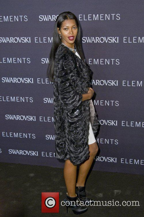Jessica White The 'Swarovski Elements 22 Ways To...