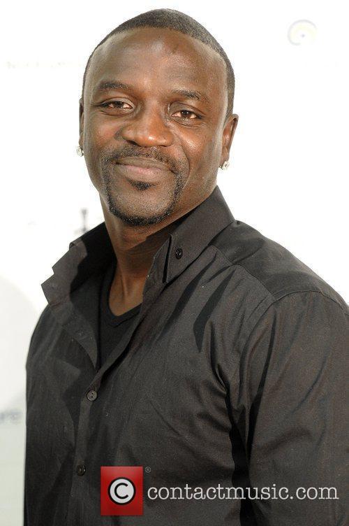 Akon and Pink 1