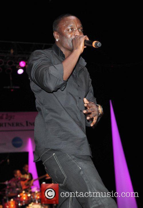 Akon and Pink 10