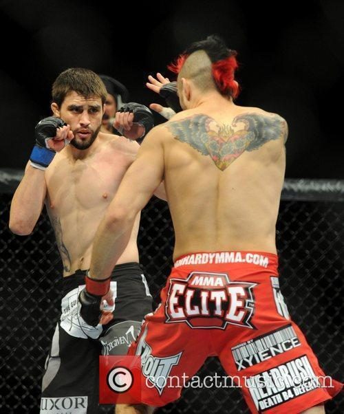 Dan Hardy from Nottingham UK gets knocked out...