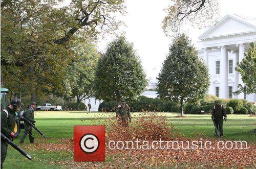 White House 19