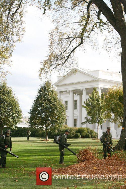 White House 24