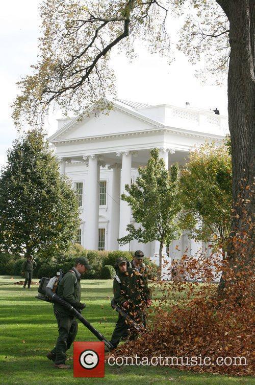 White House 16