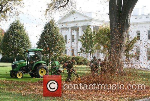 White House 12