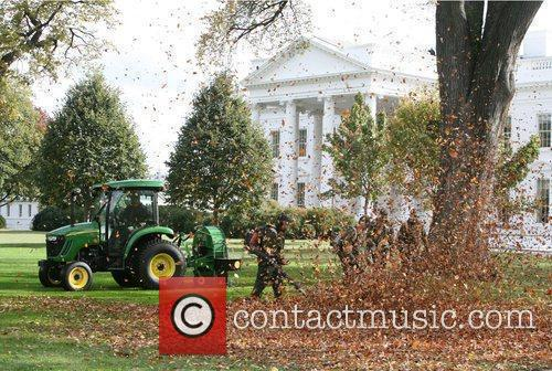 National Park Service Rangers leaf blowing on the...