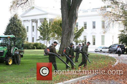 White House 26