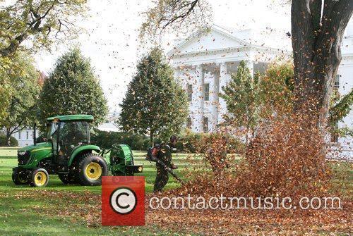 White House 25