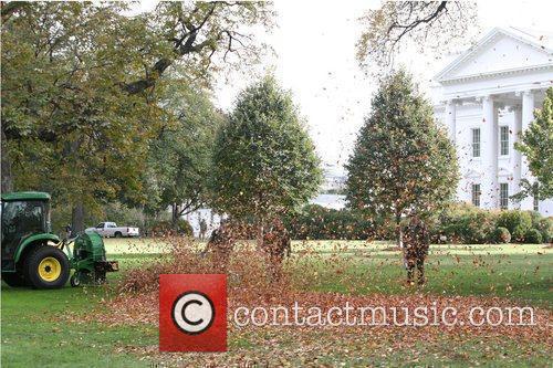 White House 13