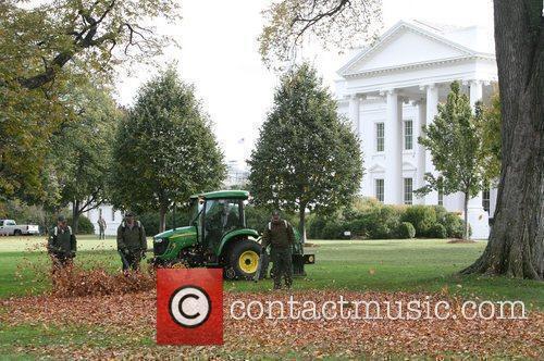 White House 21