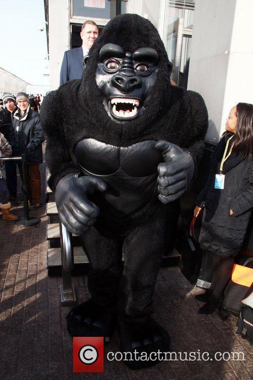 Kong 4