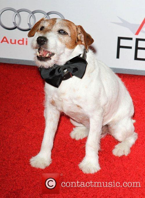 Uggie the dog AFI Fest 2011 Premiere Of...