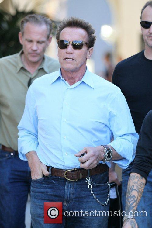 Arnold Schwarzenegger 29