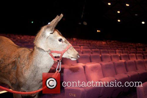Atmosphere Animals attend a special screening to commemorate...