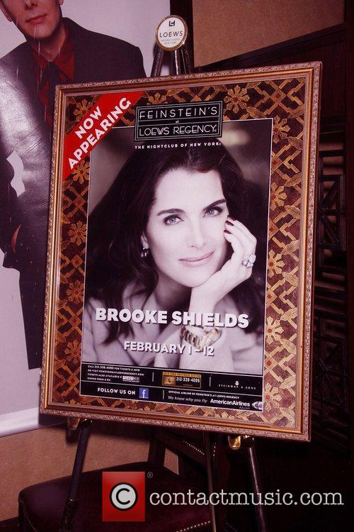 Atmosphere Opening night of 'Brooke Shields In My...