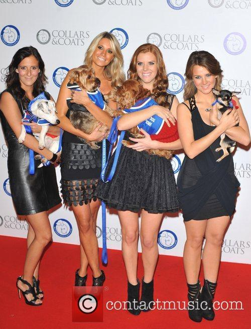 Escala Battersea Dogs & Cats Home's Collars &...