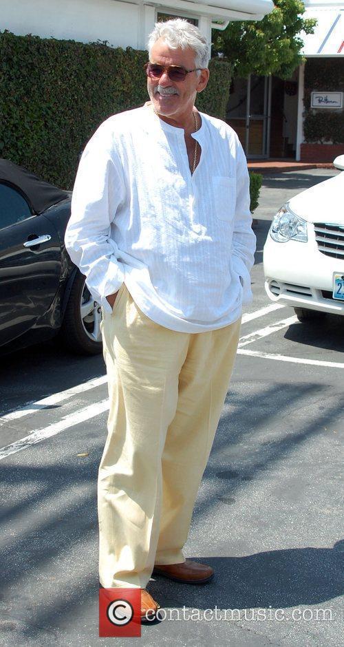 Dennis Farina 3