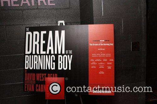 Opening night of 'The Dream of the Burning...
