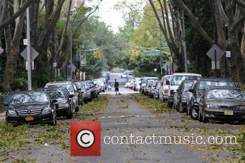 Fallen branches in Queens after hurricane Irene Most...