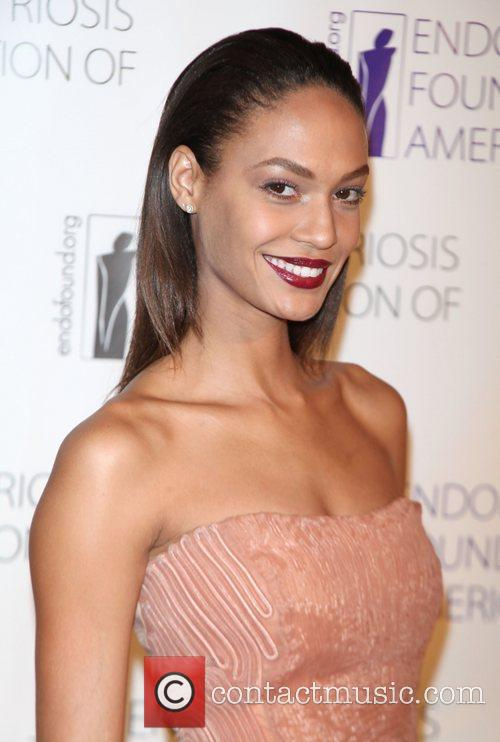 Joan Smalls  The Endometriosis Foundation of America...