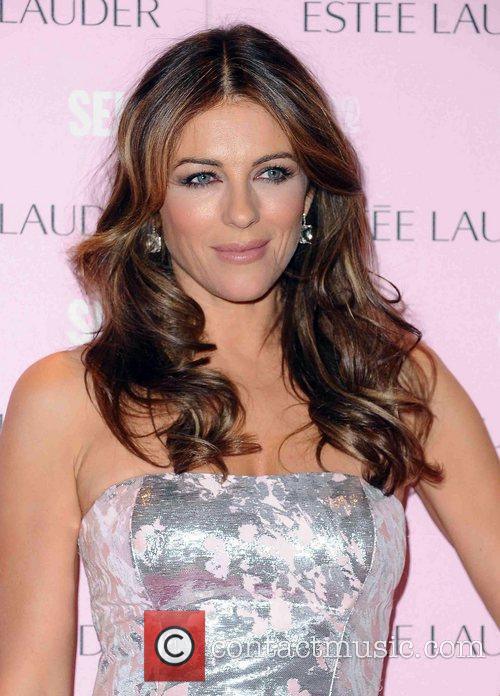Elizabeth Hurley attends a photocall at Selfridges for...