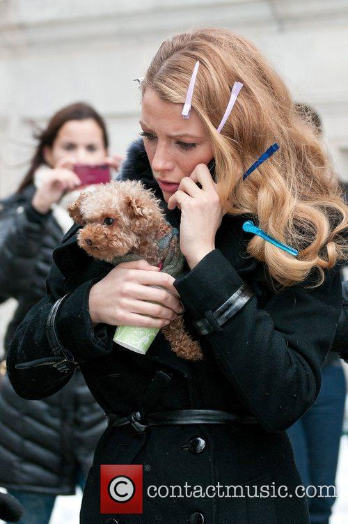 Blake Lively with her dog tucked away in...
