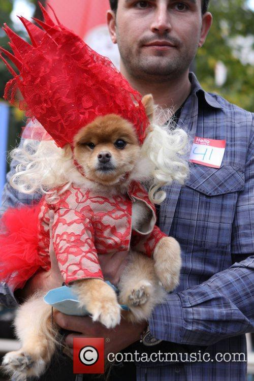 Lady Gaga dog The 21st Annual Tompkins Square...